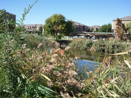 The Jordan River, West Valley City