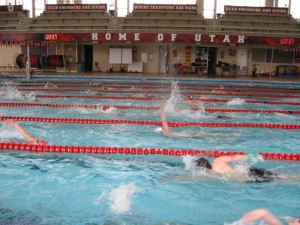 """""""Swimming has taught me how to live life as a reliable and hard working person with integrity and discipline,"""" Patrick Nordstrom said."""